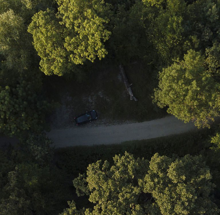 Parcul Natural Comana Drona